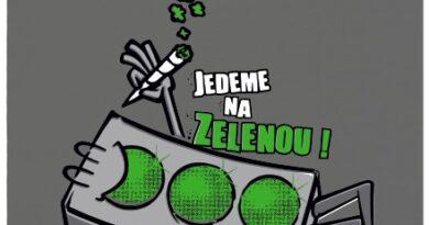 Jedeme na zelenou! - šedé dámské tričko